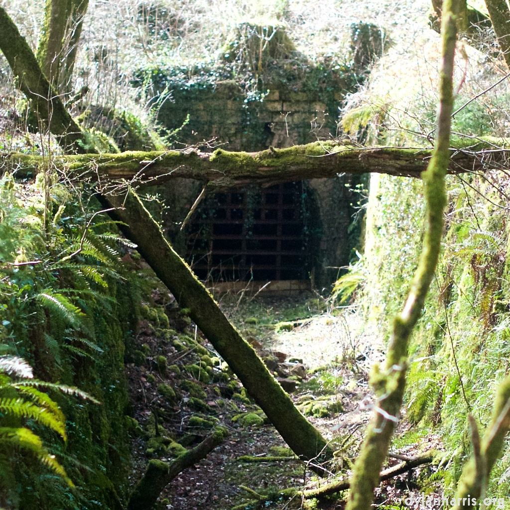 abandoned narrow gauge railway tunnel entrance