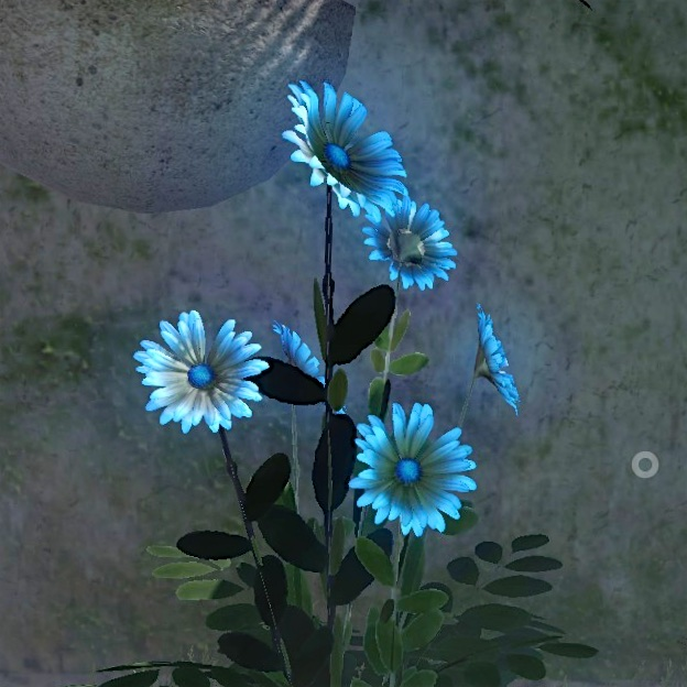 a screenshot of a quern flower
